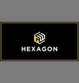 gw hexagon logo design inspiration vector image vector image