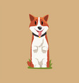 joyful red-haired corgi standing on hind legs vector image