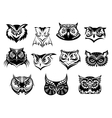large set black and white owl heads vector image