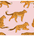 leopard feline animal laying and walking pattern vector image