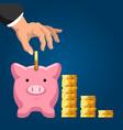 pension fund savings saving dollar coins vector image