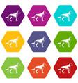 shepherd dog icon set color hexahedron vector image vector image