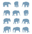 silhouettes of elephants vector image