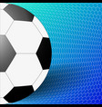 soccer ball with the grid on a light and dark vector image
