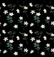 white little flower and leaves on dark night vector image