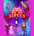 big top circus show flyer poster template vector image vector image