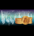 bitcoin stock digital vector image