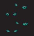 Cat eyes in the dark vector image vector image