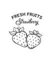 hand drawn strawberry icon vector image