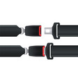 isolated seatbelt for car or airplane safety vector image vector image