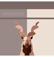 Markhor flat postcard vector image vector image