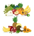 Set of fresh healthy fruit Healthy lifestyle vector image