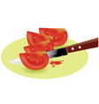 tomato slices and kitchen knife vector image vector image