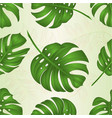 seamless texture philodendron tropical jungle vector image