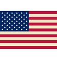 American flag USA flag vector image