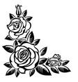 corner roses vector image vector image