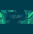 exotic tropic background with monstera leaves vector image vector image