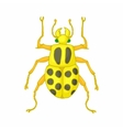 Insect bug icon cartoon style vector image vector image