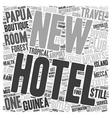 Papua New Guinea Adventure Traveler Mecca With vector image vector image