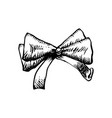 sketch bow with ribbon isolated hand drawn vector image vector image