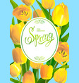 Spring bouguet of tulips