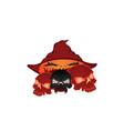 skull halloween pumpkins vector image