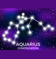 aquarius constellation starry night sky cluster vector image vector image