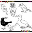 birds cartoon coloring page vector image