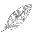Isolated feather plume design vector image vector image