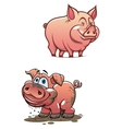 Cartoon dirty piggy and clean pink pig vector image