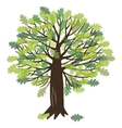with oak tree vector image