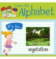 Flashcard letter V is for vegetation vector image vector image