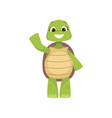front view of cute smiling green turtle standing vector image vector image