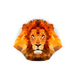 geometric polygon lion head in triangle style vector image