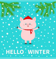 hellow winter pink pig falling snow chinise vector image