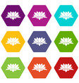 lotus flower icon set color hexahedron vector image vector image