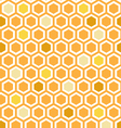Multicolor Honeycomb Pattern vector image vector image