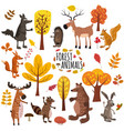 set of cute forest animals bear raccoon squirrel vector image vector image