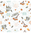 cute winter pattern with rowan berries on vector image