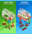 greenhouse vertical banner set vector image vector image