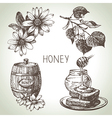 Hand drawn sketch honey set vector image