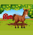 horse in the farmland vector image