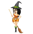Lady in Witch costume vector image vector image