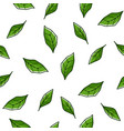mint leaves tree foliage bushes seamless pattern vector image vector image
