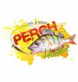 perch vector image vector image