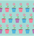 pink rose flower in pot seamless pattern wrapping vector image vector image