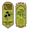 set fresh olive oil labels design element for vector image vector image