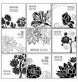 set of stylish black floral background vector image