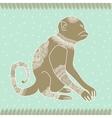 Anima monkey tender vector image vector image