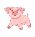 cute pig funny piggy vector image